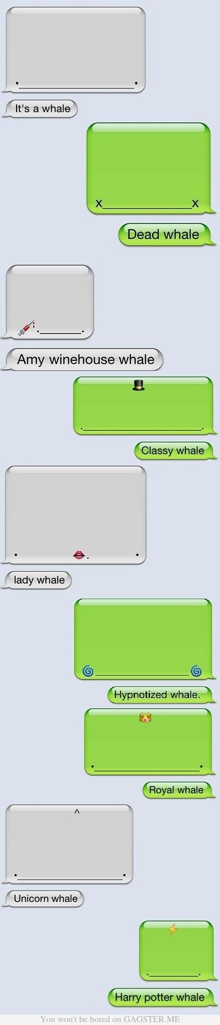 @StyleSpaceandStuff.Blogspot.com Williams I see you posted something about whales earlier. THIS MADE ME THINK OF YOU!