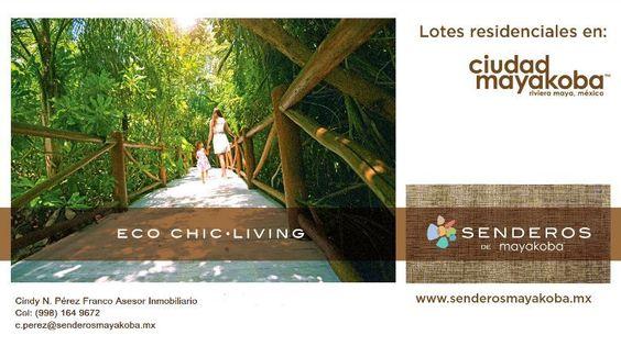 Nuevo Desarrollo de primer nivel único en la Riviera Maya, viviendas de lujo al estilo Mayakoba en armonía con la naturaleza.