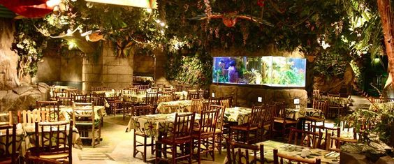 Funky restaurant in queensway london places to live another funky restaurant in queensway london places to live another kind of life pinterest notting hill london restaurants and restaurants malvernweather Choice Image