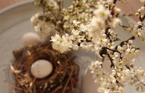 easter egg spring