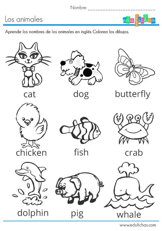 los animales en ingles