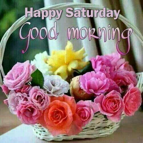 Happy Saturday!: