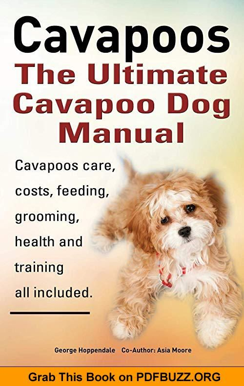 Cavapoos Cavoodle Cavadoodle The Ultimate Cavapoo Dog Manual