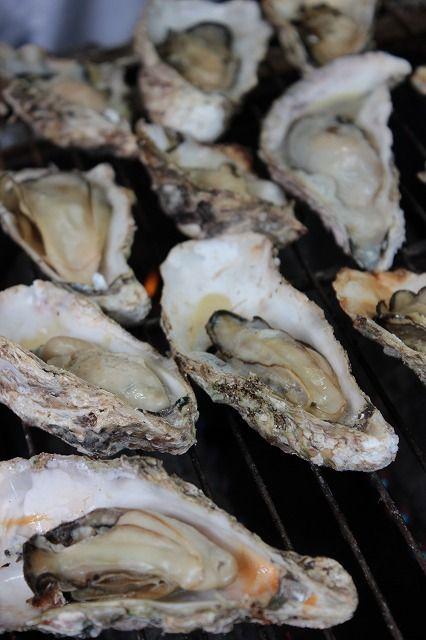 【兵庫県】河村文政さん(播州赤穂塩ラーメン組合事務局長)に聞きました。/Q.2瀬戸内の自慢したいところは?………A.冬場の牡蠣、大きくて甘い養殖のホタテはぜひ味わって欲しい食材です。それから何と言っても塩。東日本の人に聞くと「赤穂と言えば塩」と答えるほど知られた調味料です。その塩をラーメンに使わない手はないと塩ラーメンを開発。大阪や岡山からのツーリング客をはじめ、赤穂塩ラーメンの知名度も上がってきました。※写真はイメージです。  #Hyogo_Japan #Setouchi