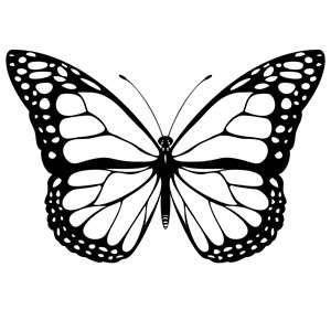 Schmetterling-Gliederung-Tattoo. 5149