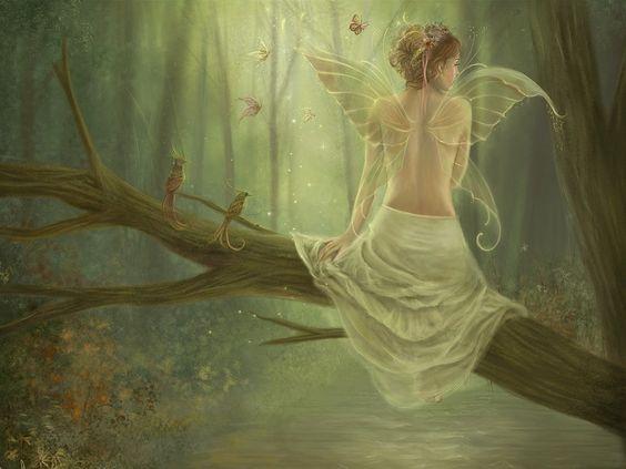 fairy wallpaper