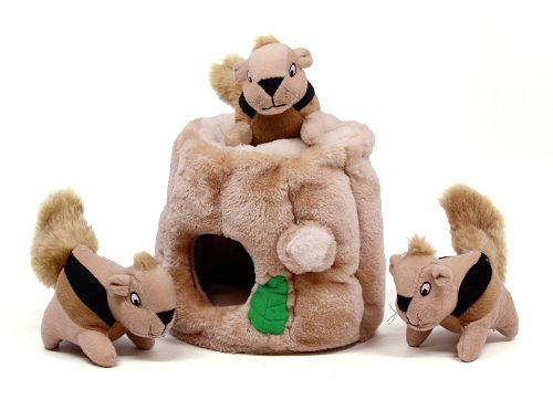 Outward Hound Hide-A-Squirrel Dog Toys $7.99 (Reg $17.99) - http://couponingforfreebies.com/outward-hound-hide-squirrel-dog-toys-7-99-reg-17-99/
