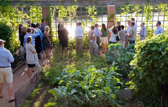 Chicago Botanic Garden | MTR Landscape Architects