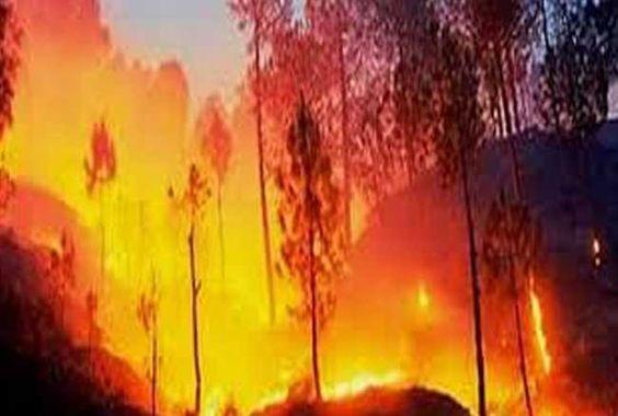 हेलीकॉप्टर की मदद से त्रिकुटा पर्वत पर लगी आग पर काबू पाने की कोशिश