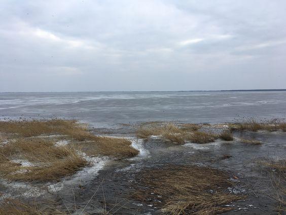 Вид на замерзший Курский залив, март 2018 года. Фото Vladimir Shveda