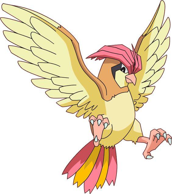 Pidgeotto de Pokémon Go 17