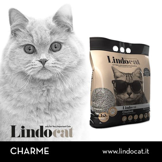 Lindocat Charme è la lettiera agglomerante arricchita da un delicato profumo all'Ambra d'Oriente. L'utile effetto lenitivo della calendula lo rendono il prodotto ideale per i gatti raffinati e dalla pelle sensibile. #cats #petcare #catcare #cats #gatto #care #animals #litter #catlitter #charme #lovecats