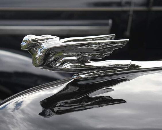 Cadillac Hood Ornaments And Hoods On Pinterest
