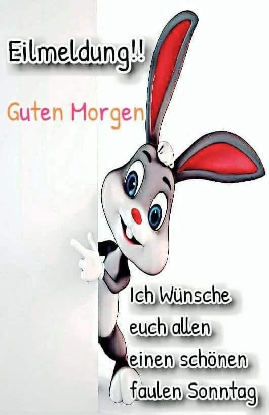 Pin Von Elke Muller Auf Guten Morgen In 2020 Lustige Guten