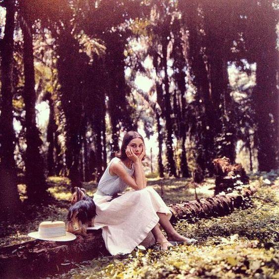 Audrey Hepburn in the Congo
