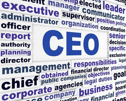 Pin by Mauricio Martinez on chief executive officer Pinterest - chief executive officer job description