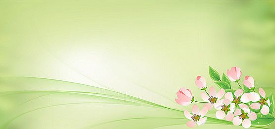 Green Soft Lines Green Vector Green Science And Technology Png