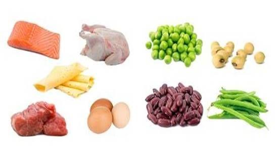 Os Alimentos Mais Ricos Em Proteina De Origem Animal E Vegetal