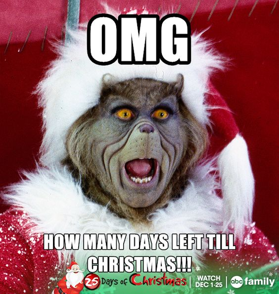 Funny Memes For Christmas : Christmas meme abc family and the grinch on pinterest