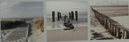 3 Cadres#deco glass# en vente chez #mrbricolage#Reze et #LeroyMerlin#Reze  Thèmes bords de mer Tons neutres