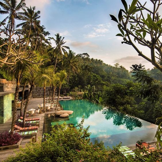 Jungle Fish bar & restaurant Ubud Bali