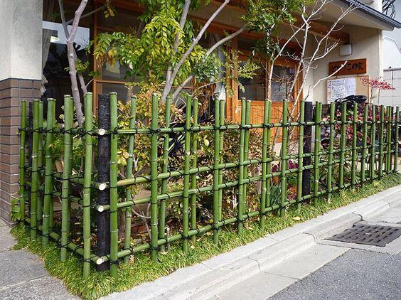 diy bamboo fence quinta Pinterest Gardens