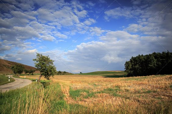 Realistic Graphic DOWNLOAD (.ai, .psd) :: http://vector-graphic.de/pinterest-itmid-1006547102i.html ... rural lansdscape near Coburg ...  clouds, coburg, corn, europe, european, fields, flowers, germany, landscape, nature, outdoors, rural, sky, summer, sunlight, tree, way  ... Realistic Photo Graphic Print Obejct Business Web Elements Illustration Design Templates ... DOWNLOAD :: http://vector-graphic.de/pinterest-itmid-1006547102i.html