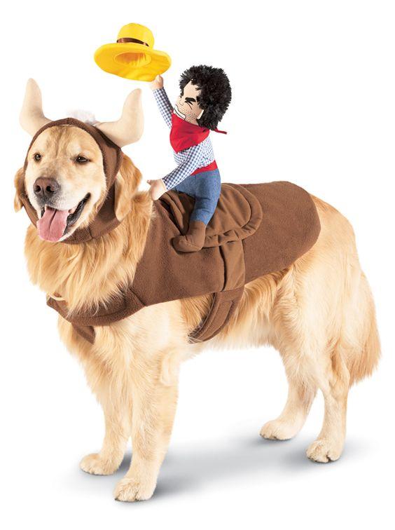 Target 2012 Cowboy Halloween Pet Costume