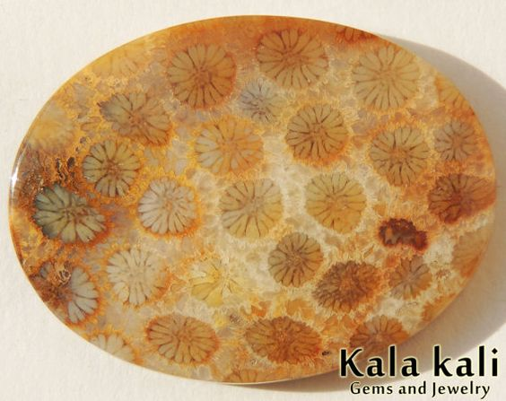Fossil coral Cabochon Oval shape Orange cream  by KalaKaliGems, €33.00