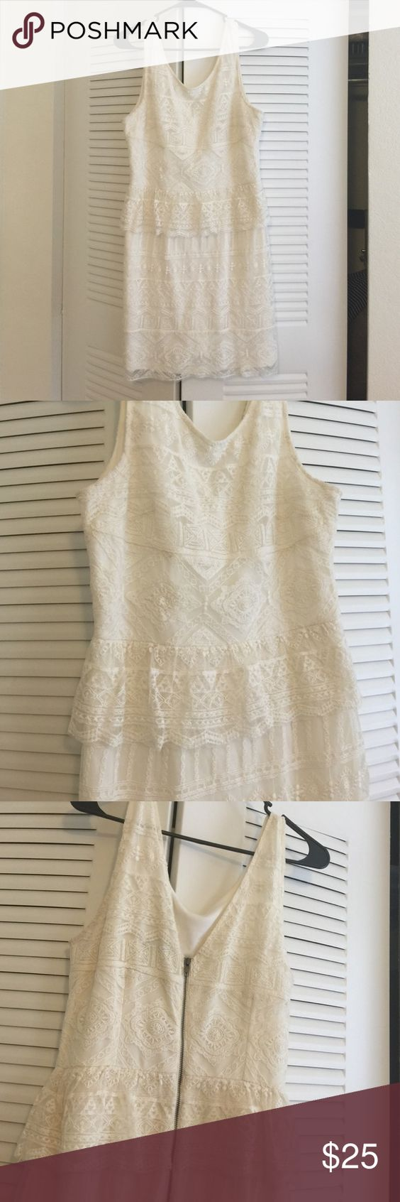 White crochet dress Good condition. Zipper back, form fitting dress. Crochet overlay. American Eagle Outfitters Dresses