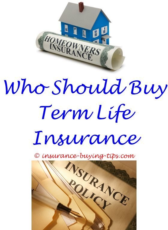 What Tyoe Of Insurance Is Buy Sell Agreement Should We Buy Pet
