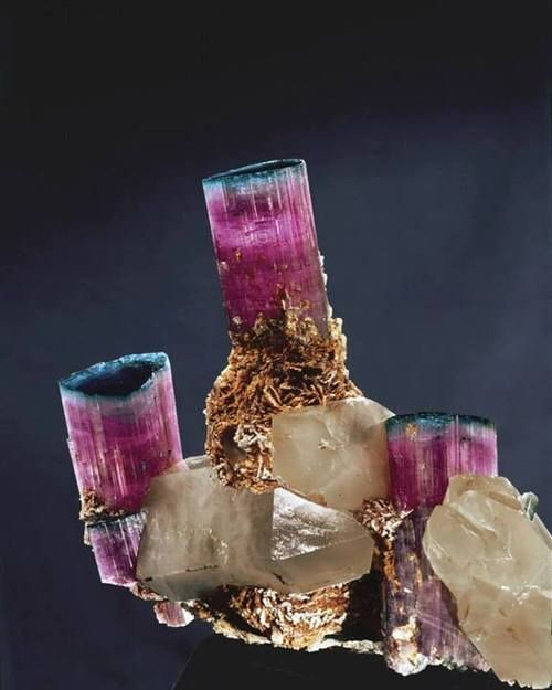 Candalabra Tourmaline / Mineral Friends <3