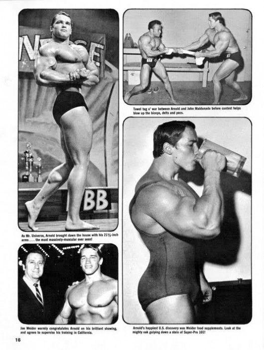 Image detail for -Arnold Schwarzenegger bodybuilding images.Arnold Schwarzenegger 2011 ...