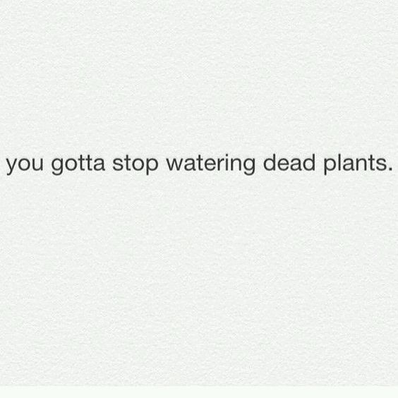 you gotta stop watering dead plants.: