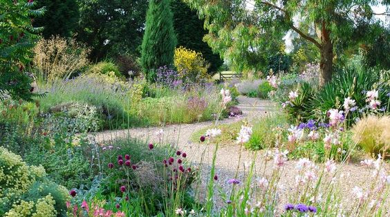 Beth Chatto Gardens in Essex. Nominated for Best Garden of the Year 2015/16.