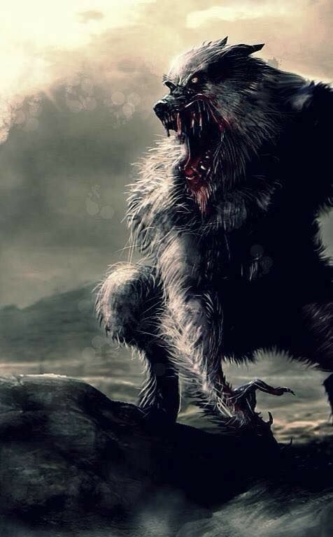 Pin By Eric Meadows On Cult Of The Wolf Werewolf
