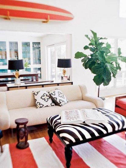 Fig tree, zebra ottoman, surfboard, orange stripe carpet