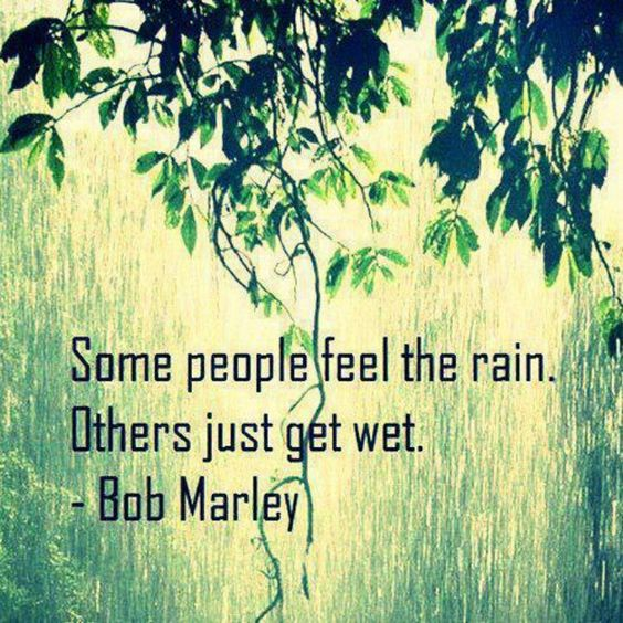 Feel the rain.