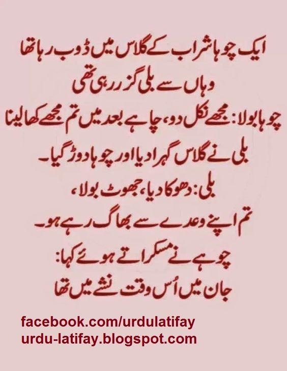 Urdu Latifay Husband Wife Funny Jokes With Cartoon 2014: Urdu Latifay: Bili Aur Choha Sharab Urdu Latifay 2014, Cat