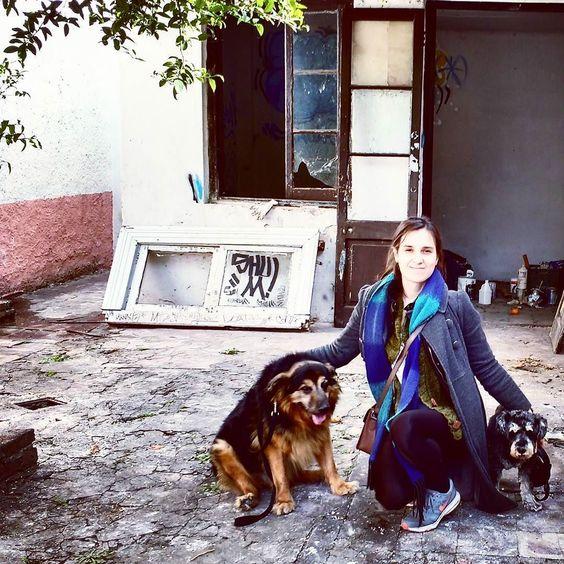 Hay equipo #vida #dogfriendly #masamoranimal #dogsofinstagram