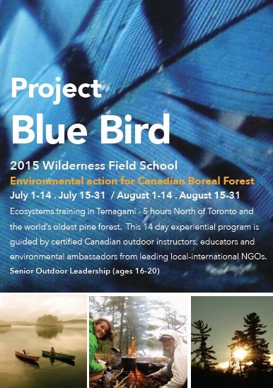 Resource: The Ontario Society for Environmental Education runs programs such as Project Blue Bird that seeks to inform and empower students about the importance of the Boreal forest in Canada. The organization works to build networks of environmental educators and environmental leaders, and provides field trip opportunities for students in the GTA to stay in the Boreal forest.