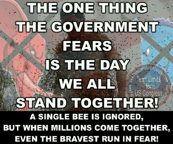 United We Stand.....WE MIGHT HAVE TO MARCH ON WASHINGTON PEOPLE TO GET OUR COUNTRY BACK...IT'S OUR COUNTRY PEOPLE.....NOT THE GOVERNMENTS.....YES MAYBE WE SHOULD MARCH.....SIGN ME UP.:
