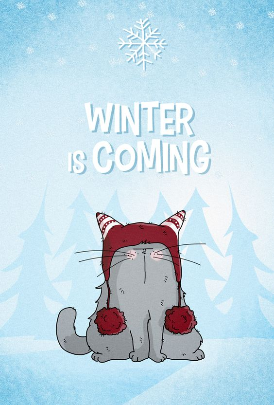 Winter is Coming !