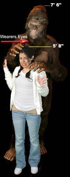 Sasquatch Bigfoot Deluxe Movie Quality Halloween Costume  sc 1 st  Meningrey & Deluxe Bigfoot Costume - Meningrey