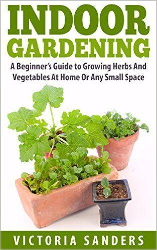 Plants container gardening and crafts on pinterest for Indoor vegetable gardening beginner