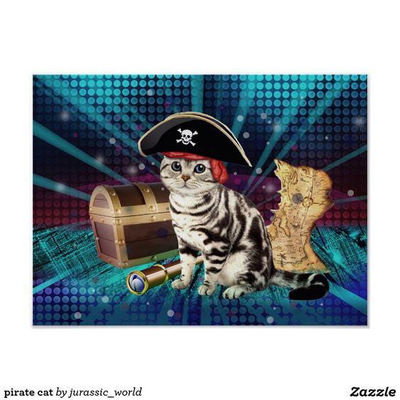 pirate cat poster