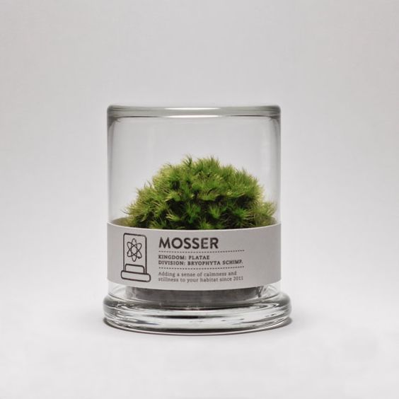 Want <3 The Mosser is a small glass terrarium filled with a simple round moss ball. The Mosser comes with a glass mister bottle used to feed your plant. They are very easy to care for and only need to be sprayed once every two weeks with filtered water. $26