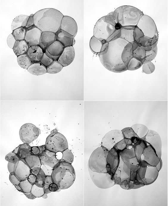wblut:    Ink mixed with soapy water. Bubbles dry on paper. Charlotte X.C. Sullivan.  viadrgreenthumb32,visicert,wowgreat,proofmathisbeautiful,freshphotons