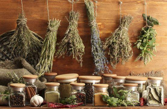 СТАРИННЫЕ ЗНАХАРСКИЕ РЕЦЕПТЫ — Планета и человек | Drying herbs, Herbalism, Healthy herbs