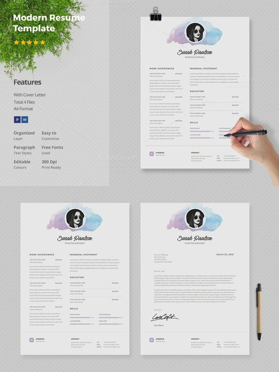 Resume Template 4 pages Minerva Resume, Templates and Resume - resume templates website